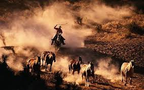 Wild West Ranch Rodeo pre-sale code for show tickets in Pueblo, CO