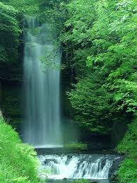 آبشار در جنگل
