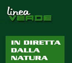 LineaVerde 03 La Valle di Fiemme su Raiuno a Linea Verde – In diretta dalla natura. Domenica 7 marzo alle 12.20.