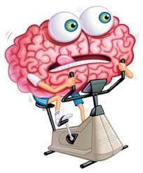 االمستقبل البسيط - Simple future Brain-gym-exercises