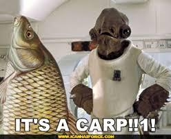 http://t3.gstatic.com/images?q=tbn:6aonjZUm71K1UM:http://www.icanhasforce.com/wp-content/uploads/2008/07/star-wars-its-a-carp.jpg&t=1