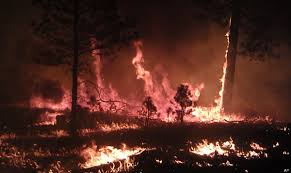 New Mexico Wildfire Map by U S Wildfires Map Reveals Rising Menace Huffpost
