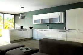 Painting Thermofoil Kitchen Cabinets Divine The Stylish High Gloss White Kitchen Cabinets Painting