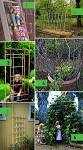 Diy Gardening Ideas | Garden Ideas Picture