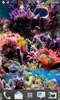Wallpapers Backgrounds - Aquarium Live Wallpaper 2 1 s