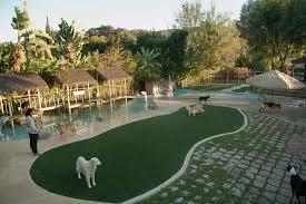 rates paradise ranch pet resort