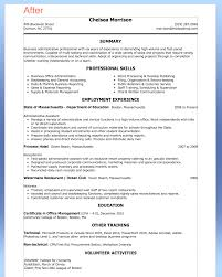 Executive Assistant Job Resume by Purchase Assistant Resume Format Free Resume Example And Writing