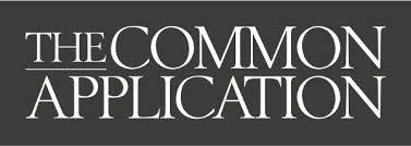 Transfer hsc legal studies world order essay online