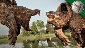 alligator snapping turtle vs common snapping turtle youtube