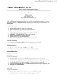 Sample Logistics Resume by Curriculum Vitae Resume Examples Hairstylist Resume Sample