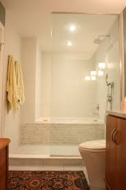 Shower Designs For Small Bathrooms Best 25 Condo Bathroom Ideas Only On Pinterest Small Bathroom