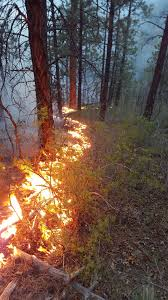 New Mexico Wildfire Map by Carson National Forest Prepares To Utilize Hondito Fire For