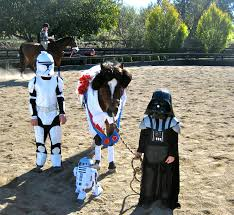 halloween horse show a hit chestnut hill llc