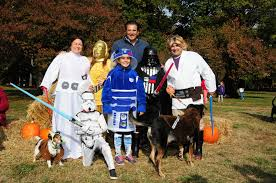 Family Of 3 Halloween Costume by Montclair Pooches Take Home The Trophy In U0027strut Your Mutt