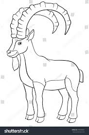 coloring pages cute ibex great horns stock vector 444933061