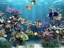 Aquarium Wallpaper 1.0.0 วอลเปเปอร์ตู้ปลาสุดสวยขยับได้อีกด้วย!!++