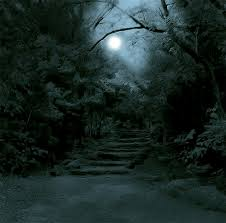 A Floresta Obscura - Página 3 Images?q=tbn:ANd9GcQ2bP1tBrxdFMUWxcDpjhL9h-tLSjcQQA00HPshkDdslj_G4byw