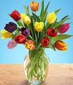 SAME DAY FLOWER DELIVERY Scottsdale|Flower Bouquets