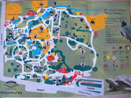 Blank Park Zoo Map by Auckland Zoo Photo Galleries Zoochat