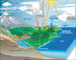 http://studyjams.scholastic.com/studyjams/jams/science/ecosystems/water-cycle.htm
