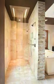 2217 best amazing showers tubs images on pinterest room dream bathroom rain shower ideas design 4