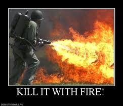 Kill it with fire!!!