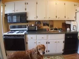 buy kitchen cabinets online tehranway decoration