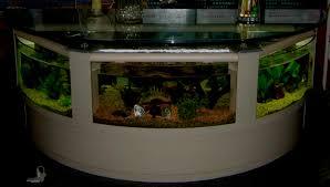 www 4fishtank com coffee table aquariums new york