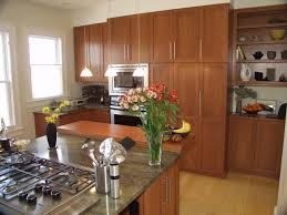 Kitchen Cabinet Wood Types Kitchen Cabinets Wood Types Design And Decorating Ideas Wonderful