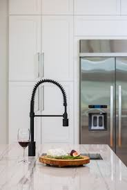 the foodie pre rinse kitchen faucet 1 75gpm kitchen taps
