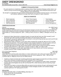 sales director resume sample top essay writing creative writing resume samples examples of resumes resume sample technical skills creative example creative writing grade samples writing prompts th