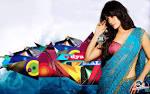 Vidya Malvade Indian Hot