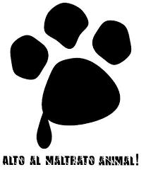 Feria de pompeya homicidio a los derechos animales
