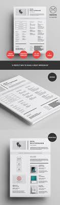 Resume Styles  resume styles examples   resume templates  example     soymujer co Free Resume Template Free Graphic Designer