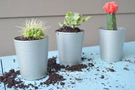 diy succulent planters my big fat happy life