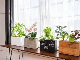 plant stand indoor window plant shelf solidaria garden planter