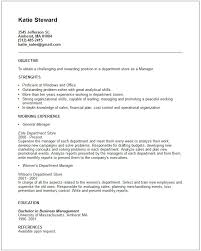 Sales  amp  Marketing Resume Examples Resume Examples