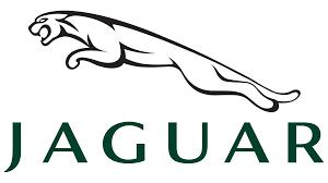 mazda car logo jaguar symbol green 1920x1080 hd 1080p jaguar logos