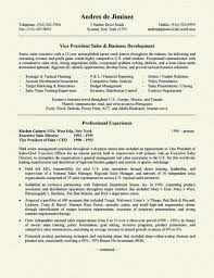 resume sample sales  jpg Resume Resource Business Development Resume Example