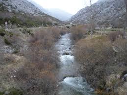 Río Cardaño