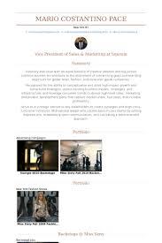 Vice President Of Sales  amp  Marketing Resume Samples VisualCV
