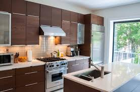 cool ikea kitchen cabinets review best home design fantastical