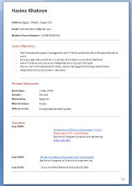 Biographical Statement Example           png   Pay Stub Template Home stretch on October deadline NIH grant   I m    fill in the
