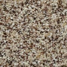 home decorators collection carpet sample captivating color