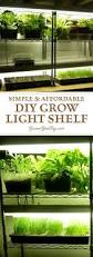 best 25 grow lights ideas on pinterest grow lights for plants