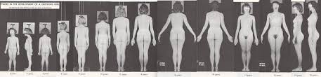 nude photos of female stages of puberty|Pediatric, Adolescent and Young Adult Gynecology - (puberty FF) Tanner  Stages
