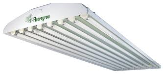 fluorescent lighting fluorescent grow light bulbs for indoor
