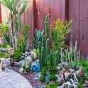 Outdoor Garden Decor with Succulents & the Sea