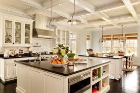 Design A New Kitchen New Kitchen Design Houzz Remodel Interior Planning House Ideas
