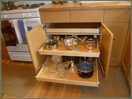 Kitchen Cabinets With Pull Out Shelves by Kitchen Cabinet Pull Out Shelves Home Depot Cabinet Home